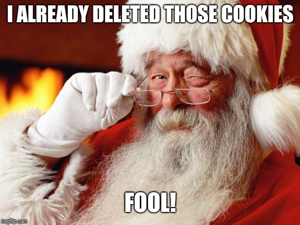 santa | I ALREADY DELETED THOSE COOKIES FOOL! | image tagged in santa | made w/ Imgflip meme maker