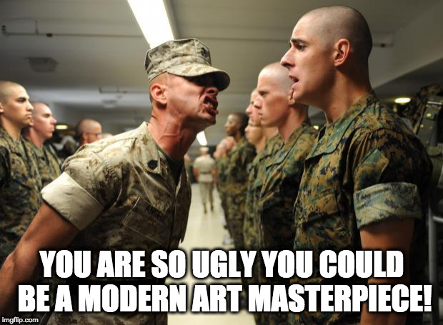 drill sergeant | YOU ARE SO UGLY YOU COULD BE A MODERN ART MASTERPIECE! | image tagged in drill sergeant | made w/ Imgflip meme maker