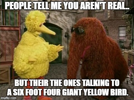 Big Bird And Snuffy | PEOPLE TELL ME YOU AREN'T REAL.. BUT THEIR THE ONES TALKING TO A SIX FOOT FOUR GIANT YELLOW BIRD. | image tagged in memes,big bird and snuffy | made w/ Imgflip meme maker