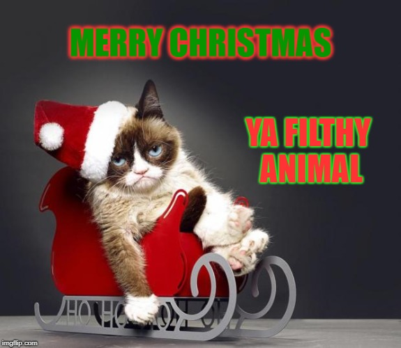 Grumpy Cat Christmas HD | MERRY CHRISTMAS YA FILTHY ANIMAL | image tagged in grumpy cat christmas hd,home alone 2 lost in new york | made w/ Imgflip meme maker