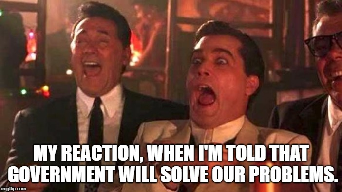 Inept  | MY REACTION, WHEN I'M TOLD THAT GOVERNMENT WILL SOLVE OUR PROBLEMS. | image tagged in government,state,mafia,libertarian,authoritarian,congress | made w/ Imgflip meme maker