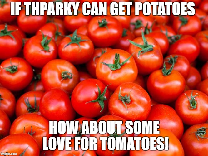 I am bored, idk if this is lazy or genius... | IF THPARKY CAN GET POTATOES HOW ABOUT SOME LOVE FOR TOMATOES! | image tagged in memes,funny,secret tag,funny memes,tomatoes,i have no idea what i am doing | made w/ Imgflip meme maker