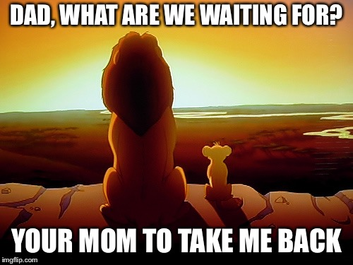 Lion King | DAD, WHAT ARE WE WAITING FOR? YOUR MOM TO TAKE ME BACK | image tagged in memes,lion king | made w/ Imgflip meme maker
