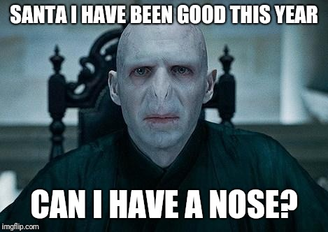 Lord Voldemort | SANTA I HAVE BEEN GOOD THIS YEAR CAN I HAVE A NOSE? | image tagged in lord voldemort | made w/ Imgflip meme maker