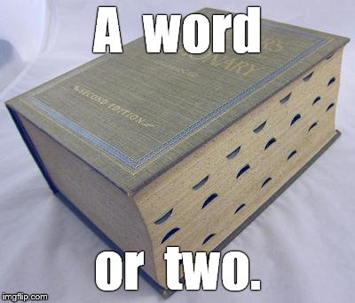 Dictionary | A  word or  two. | image tagged in dictionary | made w/ Imgflip meme maker