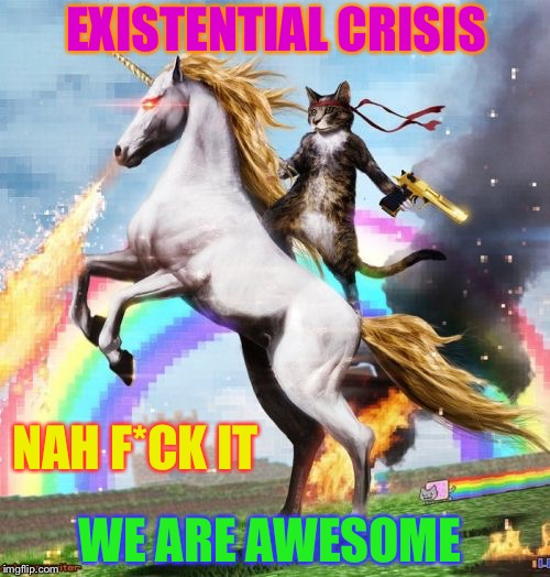 Welcome To The Internets Meme | EXISTENTIAL CRISIS NAH F*CK IT WE ARE AWESOME | image tagged in memes,welcome to the internets | made w/ Imgflip meme maker
