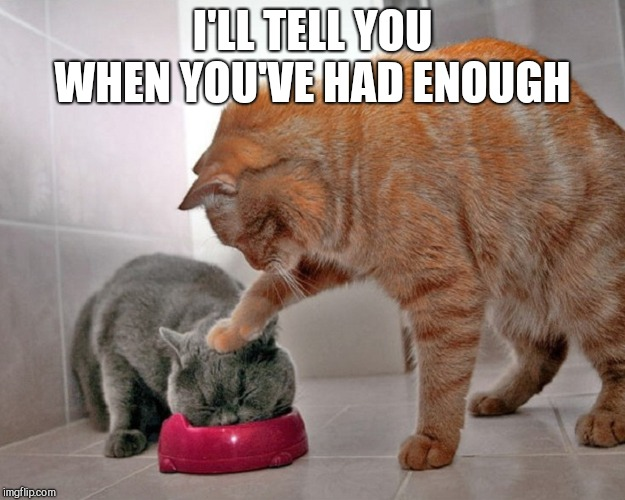 I'LL TELL YOU WHEN YOU'VE HAD ENOUGH | image tagged in cats | made w/ Imgflip meme maker