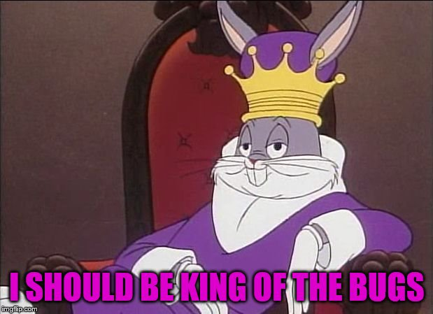 Bugs Bunny | I SHOULD BE KING OF THE BUGS | image tagged in bugs bunny | made w/ Imgflip meme maker