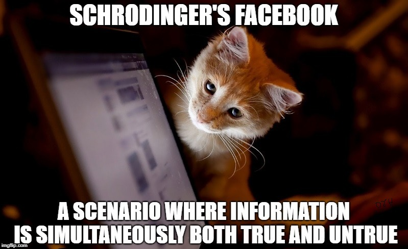 Facebook's Cat | image tagged in science,facebook,funny,fake news,nerd | made w/ Imgflip meme maker