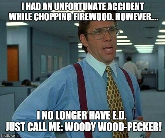 Woody Wood-Pecker | I HAD AN UNFORTUNATE ACCIDENT WHILE CHOPPING FIREWOOD. HOWEVER.... I NO LONGER HAVE E.D.  JUST CALL ME: WOODY WOOD-PECKER! | image tagged in memes,that would be great,erectile dysfunction,erection,woody | made w/ Imgflip meme maker