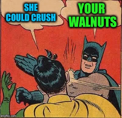 Batman Slapping Robin Meme | SHE COULD CRUSH YOUR WALNUTS | image tagged in memes,batman slapping robin | made w/ Imgflip meme maker