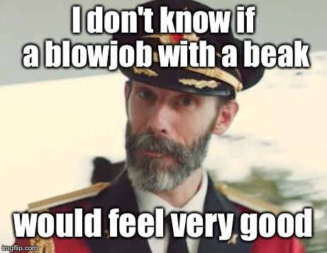 Captain Obvious | I don't know if a bl***ob with a beak would feel very good | image tagged in captain obvious | made w/ Imgflip meme maker