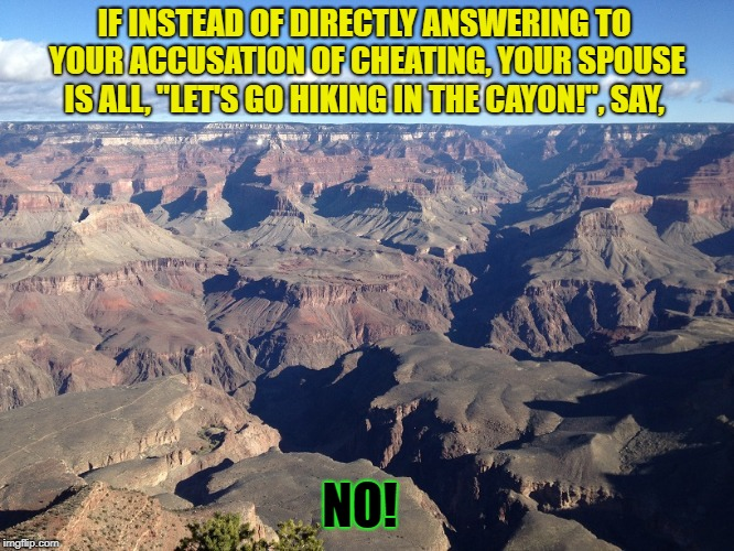 "IF INSTEAD OF DIRECTLY ANSWERING TO YOUR ACCUSATION OF CHEATING, YOUR SPOUSE IS ALL, ""LET'S GO HIKING IN THE CAYON!"", SAY, NO! 