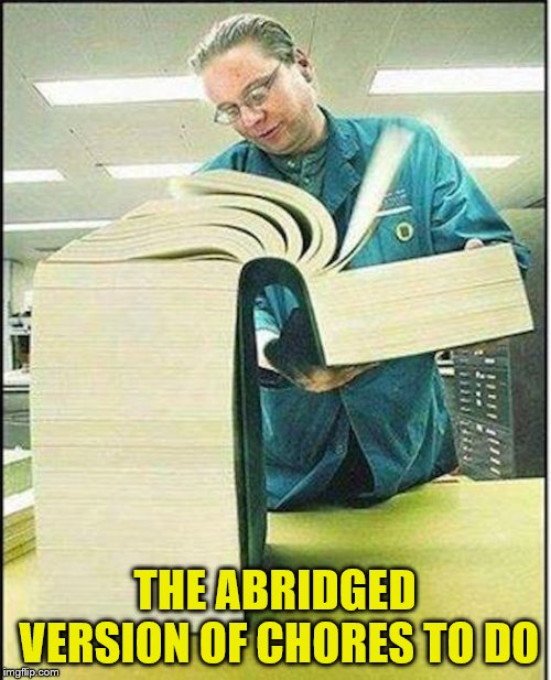 big book | THE ABRIDGED VERSION OF CHORES TO DO | image tagged in big book | made w/ Imgflip meme maker