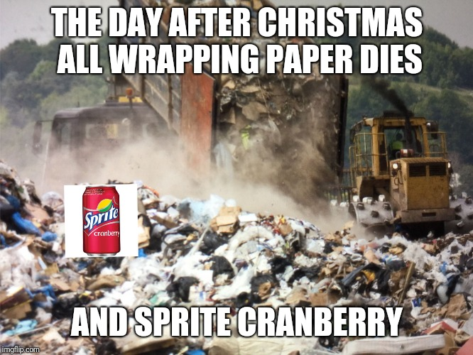 Garbage dump |  THE DAY AFTER CHRISTMAS ALL WRAPPING PAPER DIES; AND SPRITE CRANBERRY | image tagged in garbage dump,christmas,sprite cranberry,memes | made w/ Imgflip meme maker