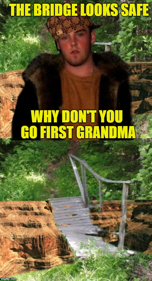 Family excursion  | THE BRIDGE LOOKS SAFE WHY DON'T YOU GO FIRST GRANDMA | image tagged in memes,funny memes,scumbag steve,park,bridge,unsafe | made w/ Imgflip meme maker