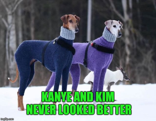 ...and Poof, The Wishes Of Millions Of People Happened.  | KANYE AND KIM NEVER LOOKED BETTER | image tagged in hilarious,dogs,christmas sweater | made w/ Imgflip meme maker