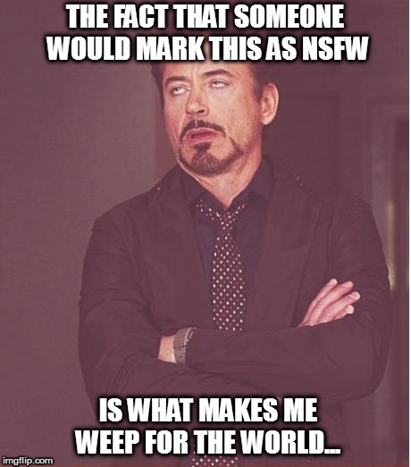 Face You Make Robert Downey Jr Meme | THE FACT THAT SOMEONE WOULD MARK THIS AS NSFW IS WHAT MAKES ME WEEP FOR THE WORLD... | image tagged in memes,face you make robert downey jr | made w/ Imgflip meme maker