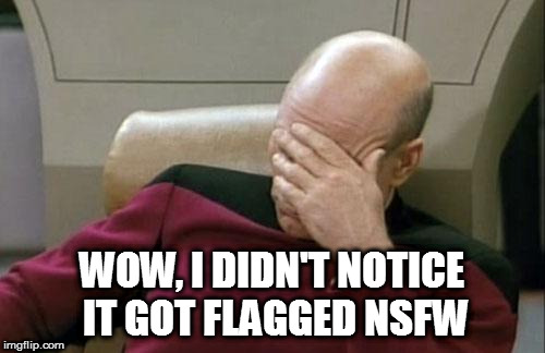 Captain Picard Facepalm Meme | WOW, I DIDN'T NOTICE IT GOT FLAGGED NSFW | image tagged in memes,captain picard facepalm | made w/ Imgflip meme maker