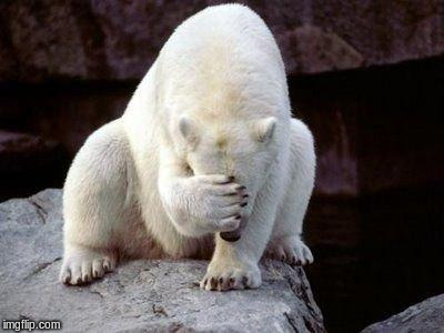Polar bear facepalm | . | image tagged in polar bear facepalm | made w/ Imgflip meme maker