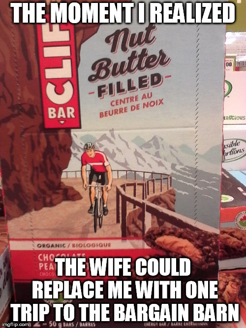 nut butter | THE MOMENT I REALIZED THE WIFE COULD REPLACE ME WITH ONE TRIP TO THE BARGAIN BARN | image tagged in nut butter | made w/ Imgflip meme maker