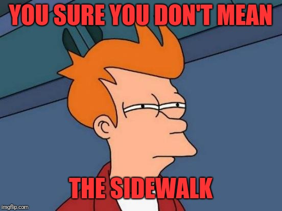 Futurama Fry Meme | YOU SURE YOU DON'T MEAN THE SIDEWALK | image tagged in memes,futurama fry | made w/ Imgflip meme maker