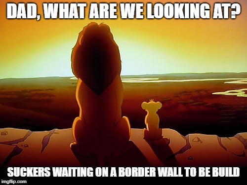 Lion King | DAD, WHAT ARE WE LOOKING AT? SUCKERS WAITING ON A BORDER WALL TO BE BUILD | image tagged in memes,lion king | made w/ Imgflip meme maker