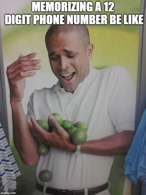 Why Can't I Hold All These Limes |  MEMORIZING A 12 DIGIT PHONE NUMBER BE LIKE | image tagged in memes,why can't i hold all these limes | made w/ Imgflip meme maker