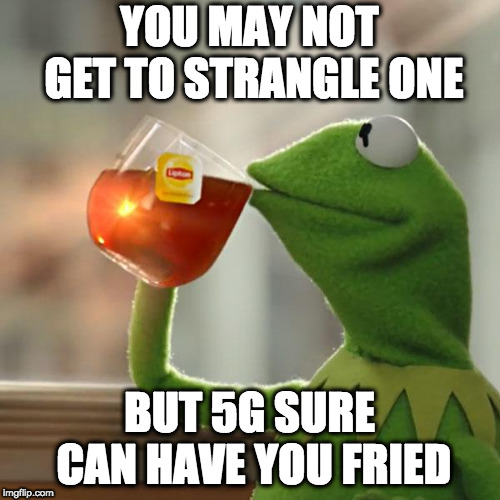 But Thats None Of My Business Meme | YOU MAY NOT GET TO STRANGLE ONE BUT 5G SURE CAN HAVE YOU FRIED | image tagged in memes,but thats none of my business,kermit the frog | made w/ Imgflip meme maker