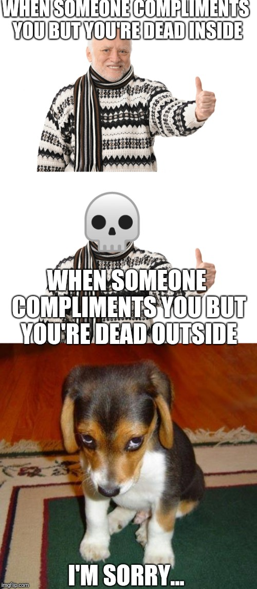 WHEN SOMEONE COMPLIMENTS YOU BUT YOU'RE DEAD INSIDE WHEN SOMEONE COMPLIMENTS YOU BUT YOU'RE DEAD OUTSIDE I'M SORRY...  | image tagged in sorry,harold approves | made w/ Imgflip meme maker