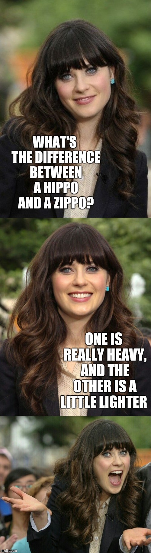 Zooey Deschanel joke template  | WHAT'S THE DIFFERENCE BETWEEN A HIPPO AND A ZIPPO? ONE IS REALLY HEAVY, AND THE OTHER IS A LITTLE LIGHTER | image tagged in zooey deschanel joke template,zooey deschanel,jbmemegeek,bad puns | made w/ Imgflip meme maker
