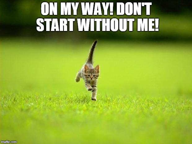 Running Cat | ON MY WAY! DON'T START WITHOUT ME! | image tagged in running cat | made w/ Imgflip meme maker