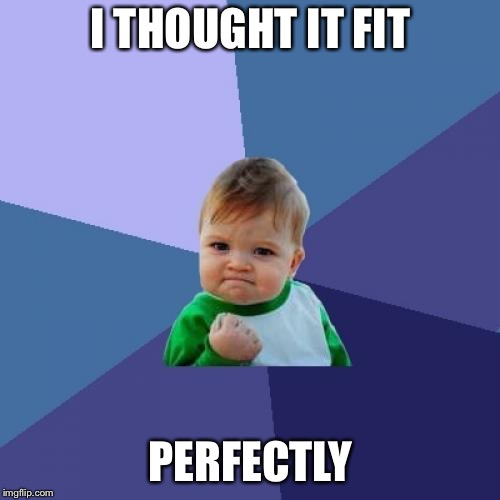Success Kid Meme | I THOUGHT IT FIT PERFECTLY | image tagged in memes,success kid | made w/ Imgflip meme maker