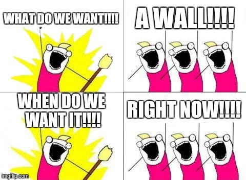 What Do We Want | WHAT DO WE WANT!!!! A WALL!!!! WHEN DO WE WANT IT!!!! RIGHT NOW!!!! | image tagged in memes,what do we want | made w/ Imgflip meme maker
