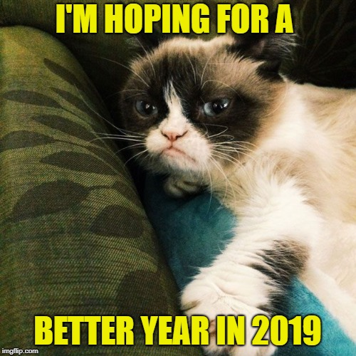I'M HOPING FOR A BETTER YEAR IN 2019 | made w/ Imgflip meme maker