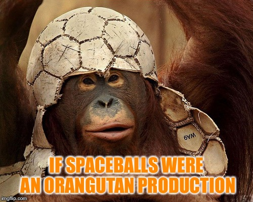 If.... | IF SPACEBALLS WERE AN ORANGUTAN PRODUCTION | image tagged in orangutan,spaceballs,production,movies,spoof,scifi | made w/ Imgflip meme maker