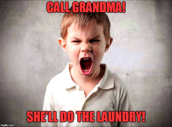 Kid yelling | CALL GRANDMA! SHE'LL DO THE LAUNDRY! | image tagged in kid yelling | made w/ Imgflip meme maker