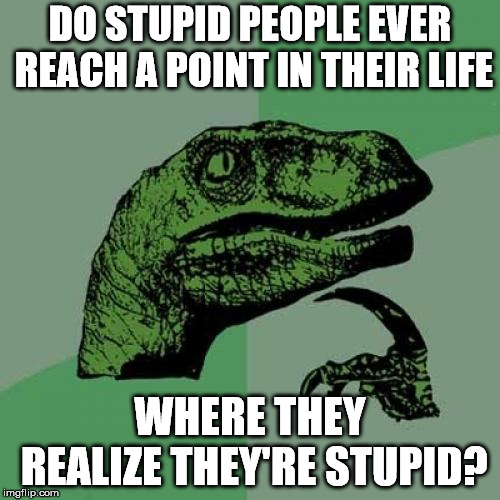 Philosoraptor Meme | DO STUPID PEOPLE EVER REACH A POINT IN THEIR LIFE WHERE THEY REALIZE THEY'RE STUPID? | image tagged in memes,philosoraptor | made w/ Imgflip meme maker