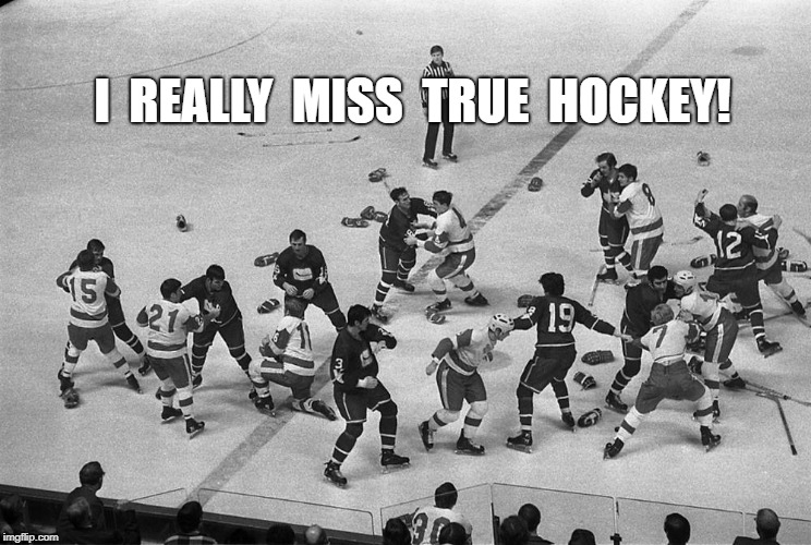 Hockey Old School | I  REALLY  MISS  TRUE  HOCKEY! | image tagged in fight,meme | made w/ Imgflip meme maker