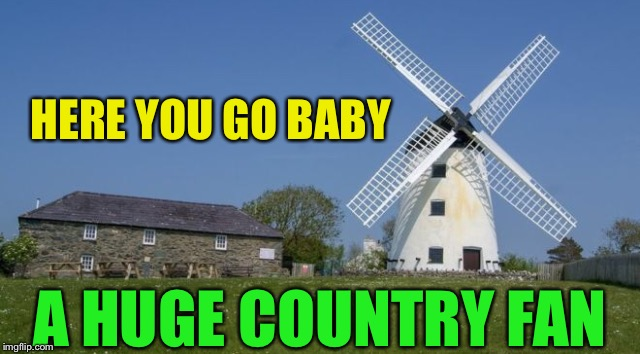 HERE YOU GO BABY A HUGE COUNTRY FAN | made w/ Imgflip meme maker