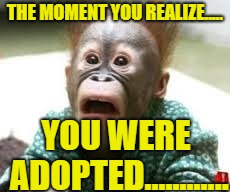 The moment you realize you were adopted........ | THE MOMENT YOU REALIZE..... YOU WERE ADOPTED............ | image tagged in adopted,noooooooooooooooooooooooo,why | made w/ Imgflip meme maker