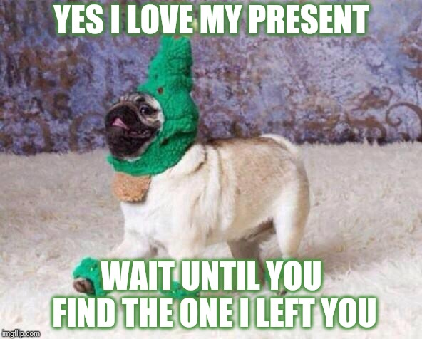Careful , he might get vicious | YES I LOVE MY PRESENT WAIT UNTIL YOU FIND THE ONE I LEFT YOU | image tagged in christmas dog,christmas decorations,not funny,funny dogs,does your dog bite | made w/ Imgflip meme maker