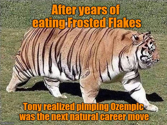 After years of eating Frosted Flakes Tony realized pimping Ozempic was the next natural career move | image tagged in tony the diabetic tiger,frosted flakes,diabetes,humor | made w/ Imgflip meme maker
