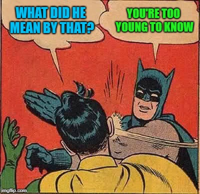 Batman Slapping Robin Meme | WHAT DID HE MEAN BY THAT? YOU'RE TOO YOUNG TO KNOW | image tagged in memes,batman slapping robin | made w/ Imgflip meme maker