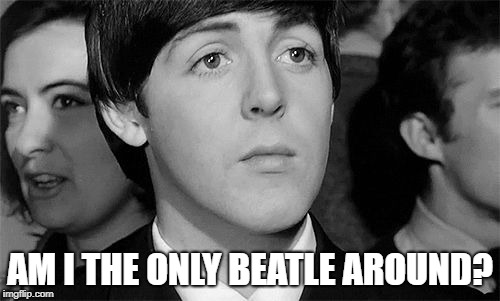 Paul McCartney | AM I THE ONLY BEATLE AROUND? | image tagged in paul mccartney | made w/ Imgflip meme maker