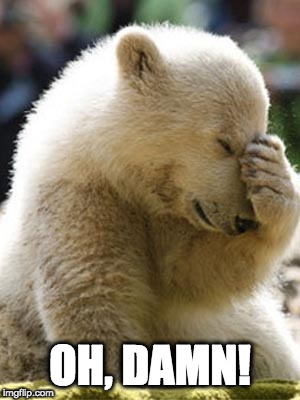 Facepalm Bear Meme | OH, DAMN! | image tagged in memes,facepalm bear | made w/ Imgflip meme maker
