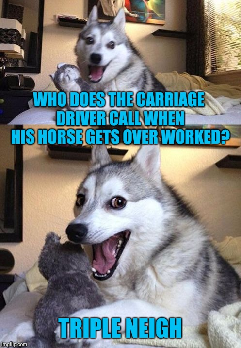 Their Motto: Don't Worry, We'll Be There In A Surrey | WHO DOES THE CARRIAGE DRIVER CALL WHEN HIS HORSE GETS OVER WORKED? TRIPLE NEIGH | image tagged in bad pun dog 2,bad pun dog,horse | made w/ Imgflip meme maker