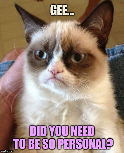 Grumpy Cat Meme | GEE... DID YOU NEED TO BE SO PERSONAL? | image tagged in memes,grumpy cat | made w/ Imgflip meme maker