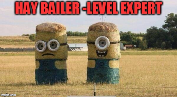 HAY BAILER -LEVEL EXPERT | image tagged in hay bails,minions,farmer | made w/ Imgflip meme maker