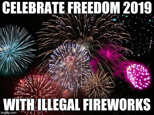 New Years  |  CELEBRATE FREEDOM 2019; WITH ILLEGAL FIREWORKS | image tagged in new years | made w/ Imgflip meme maker